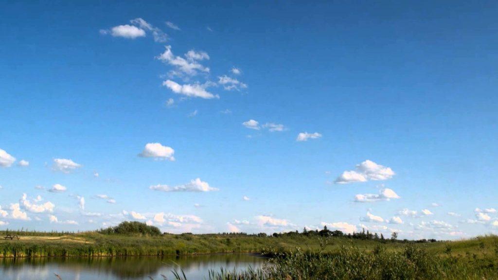 Fishing Pond Peace River Alberta Cecil Thompson Park Adjacent to Rendez-Vous RV Park